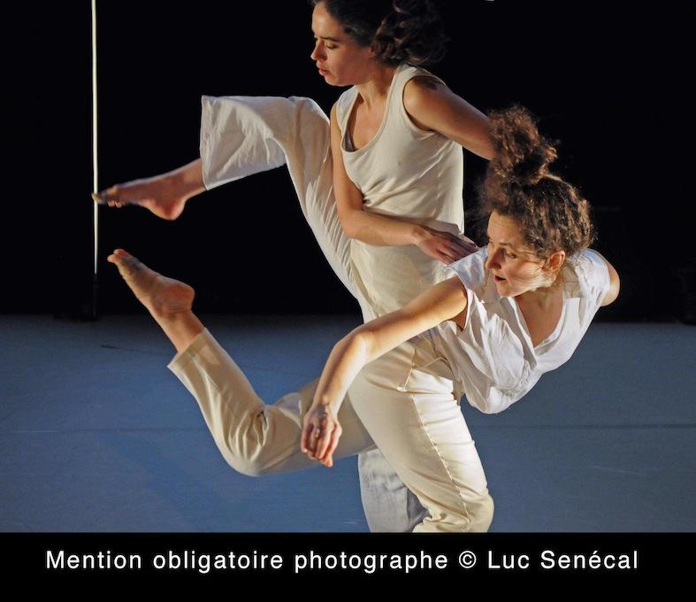 Cinq humeurs / Photo: Luc Sénécal